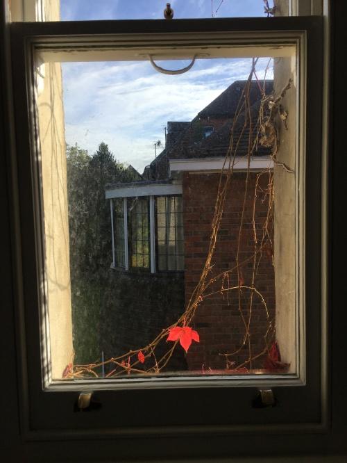9_Autumn_5